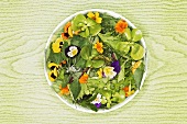 Salad leaves with edible flowers