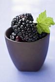 Blackberries with leaf in small beaker