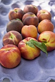 Peaches and nectarines with leaves