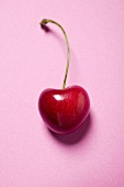 Cherry with stalk on pink background