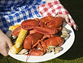 Hands holding platter of lobster, clams & corn cobs (USA)