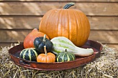 Squashes and pumpkins on brown tray on straw