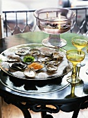 Fresh oysters and caviar on platter with salt