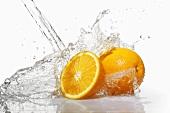 Orangen im Wasserstrahl
