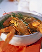 Freshwater crayfish in vegetable stock