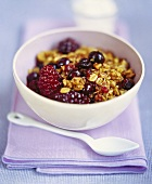 A bowl of muesli with berries
