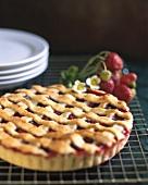 Strawberry tart with pastry lattice