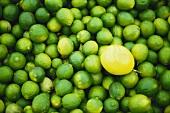 Limes and a lemon