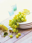 Green grapes on white plates