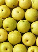Nashi fruits