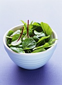 Salad with beetroot leaves