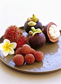 Still life with lychees, rambutans and mangosteens