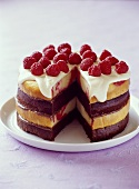 Two colour cake with raspberries
