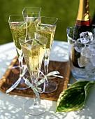 Champagne in square glasses