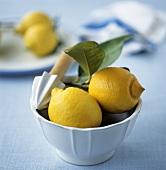 Sicilian lemons with lemon squeezer