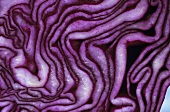 Red cabbage, cut in half