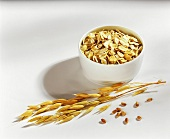 Rolled oats, ears of oats and oat grains