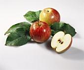 Äpfeln mit Blättern (Sorte: Rheinischer Krummstiel)