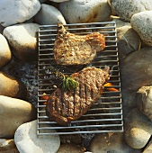 Meat on grill rack above fire
