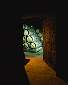 Old wine cellar with wooden barrique barrels