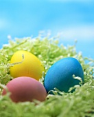 Three coloured eggs in Easter nest