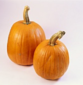 Two pumpkins (variety: Ghost Rider)