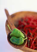 Red chili peppers and green pimentos