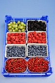 Containers of different types of berries in a crate