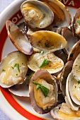 Clams in white wine and garlic stock