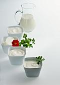 Crème double, crème fraiche, sour cream (two types) & cream
