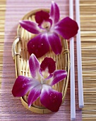 Edible 'Karma' orchid flowers in small basket