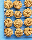 Oatmeal biscuits with dates