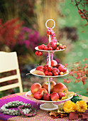 Tiered stand with red apples and ornamental apples