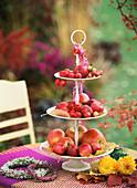 Etagere mit roten Äpfeln und Zieräpfeln