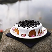 Blueberry cake with glace icing