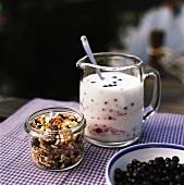 Müsli, Heidelbeeren und Joghurt
