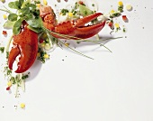 Mixed salad with cooked lobster claws