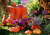Table in open air, autumn flowers and pumpkins in front