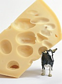 A piece of Emmental cheese with a toy cow