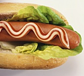Red and white hot dog