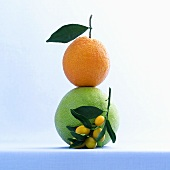 Still life with kumquats, pomelo and orange