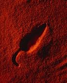 Abdruck einer Cayennepfefferschote auf Paprikapulver
