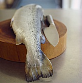 Wild salmon with knife on a wooden board