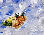 Seafood in shell on ice
