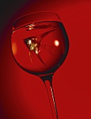 Goldfish in wine glass against red background