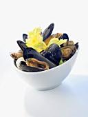 Mussels in a dish