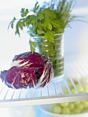 Radicchio beside a jar of herbs in fridge
