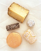 Cheeses: Cantal, Saint Maure, Sancerre, Munster, Charolais