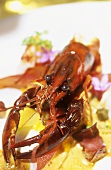 Crayfish, chestnuts and biltong (Paarl, S. Africa)