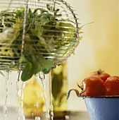 Salad in salad strainer and tomatoes